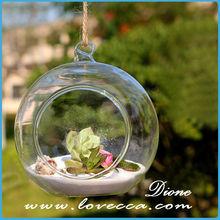 buy terrarium uk decorate home and garden fashion design