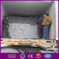 High quality Electro galvanized hexagonal wire netting/ chicken wire