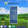 Bluesun China factory poly 150w pv solar panel price