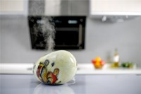 high quality ceramic flower fragrance diffuser,feu orange car air freshener,diffuser oil