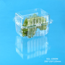 1000g Disposable Plastic clamshell grape packing box with clear hinged lid
