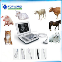 full digital color ultrasound machine & animal ultrasound scanner for cow /pig/sheep