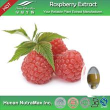 Top Quality Raspberry Extract 4:1~20:1
