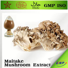 Best Business Buy Maitake Mushroom Powder