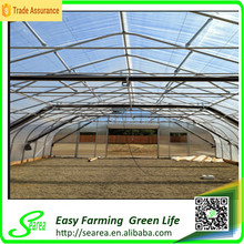 cold frame gothic greenhouse