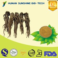 China Supplier Medicine for Blood Circulation Dong Quai Root Extract Powder for Immune Booster