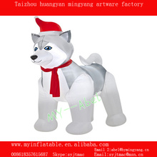 MY inflatable christmas decor husky dog