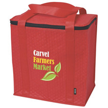 Promotional Zippered Insulated Grocery Tote Insulated Coolers Bags