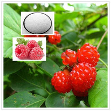 Factory supply Palm leaf Raspberry Fruit extract