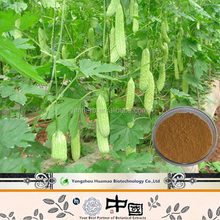 Produce the plant extract pure Bitter Melon Extract 10:1