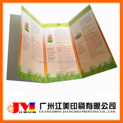 Hot Selling Top Quality Advertising Promotional Custom Color Flyers Printing