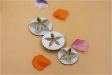 fondant cake decoration/ plastic cookie cutter star shape plunger cutter