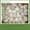 Wholesale Nature Garlic Price from exporters in China