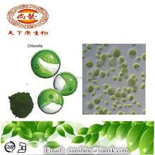 High Quality Organic Chlorella /Chlorella 50% Protein Powder / Chlorella Vulgaris Extract