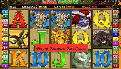 buy online casino software