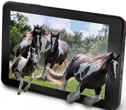 protable 10'' androdi tablet with wifi/gps/3g/camera