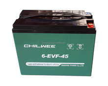 EVF Series VRLA Gel Battery for Electric Vehicles, 12V 45Ah at 3hr rate
