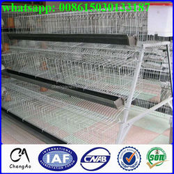 High Quality Automatic Chicken Layer Battery Cage/california Chicken Cage