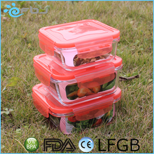 Color Square High Borosilicate Glass Food Container With Lid