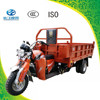 Large loading 5 wheel gasoline motor vehicle for adult