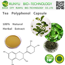 CAS 84650-60-2 Green tea extract tea polyphenol EC GTP EGCG natural tea polyphenol capsule