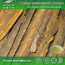 Top Quality Amur Cork Tree Bark Extract 4:1 5:1 10:1