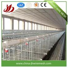 egg laying chicken cages/little chick cages/broiler chicken cage