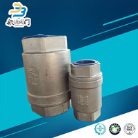 Water Meter Double Disc Vertical Lift Check Valve
