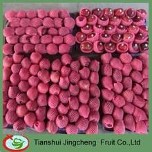 Wholesale price Huaniu Apples