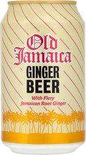 DG Ginger Beer