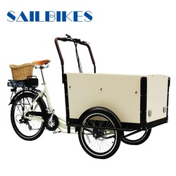 truck cargo tricycle for sale