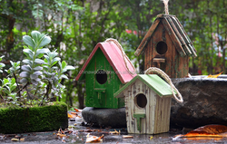 wooden insect house with metal roof bird house