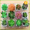 Table decorative artificial mini cactus succulent plants decoration