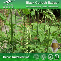 Black Cohosh Extract, Black Cohosh Extract Powder, Black Cohosh PE Triterpene Glycosides 2.5%