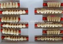 colorido 3 capas de acrílico dientes de resina sintética