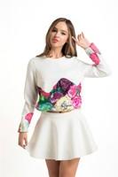 2015 Wholesale Korean Fashion Ball Grown 2 Piece Women Dresses And Skirts Autumn Dress