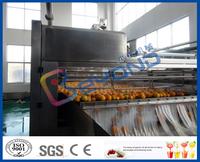 orange brusher fruit cleaning machine