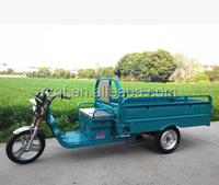 cheap electric storage battery tricycle rickshaw