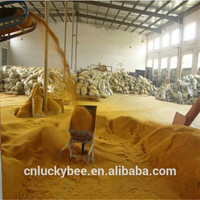 Corn Distillers Dried Grains with Solubles (DDGS)