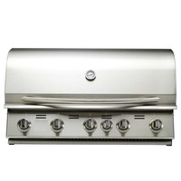 Portable Build In Gas Grills With 5 Burners Infrared Back Burne BBQ Grills