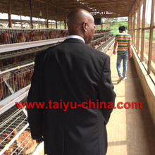 TaiYu factory egg layer chicken farm design battery cages