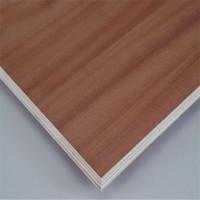 hot sale door skin plywood home depot