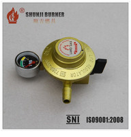 Home Use LPG Cylinder Pressure Regulator, Low Pressure LPG Gas Regulator, LPG Cylinder Regulator Export to Africa Kenya Ghana