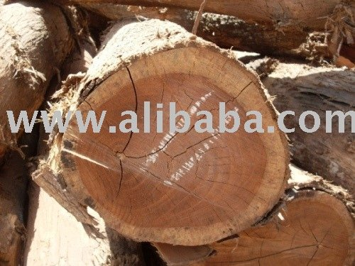Teak Wood Round Logs  Buy Teak Wood Logs Product on