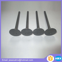 Forklift parts for Daewoo DC24 intake valve DC24 exhaust valve