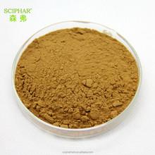 Fine Polygonum multiflorum Thunb. powder