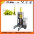 de semilla de uva aceite extractor de la máquina