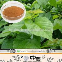 Mulberry Extract Weight Loss/ 1-Deoxynojirimycin DNJ / Nutritional Supplements manufacturer
