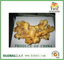 ginger price in china