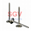 /product-gs/diesel-engine-valves-with-different-dimensions-673076225.html